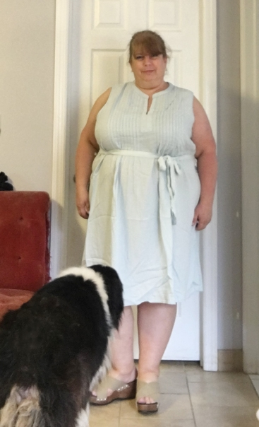 chambray dress 2