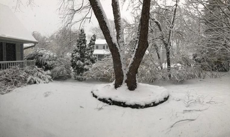 snow 4.2.18