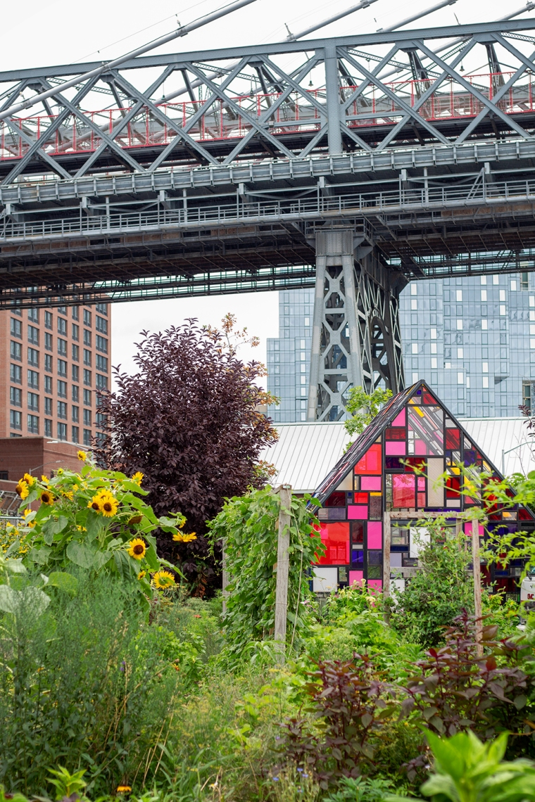mondrian greenhouse domino park 8.19.18 resized